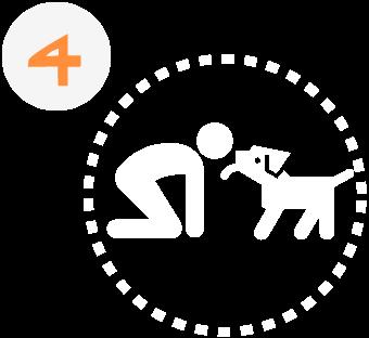 Garde de chien Toulouse - étape 4