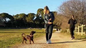 femme promenant un chien
