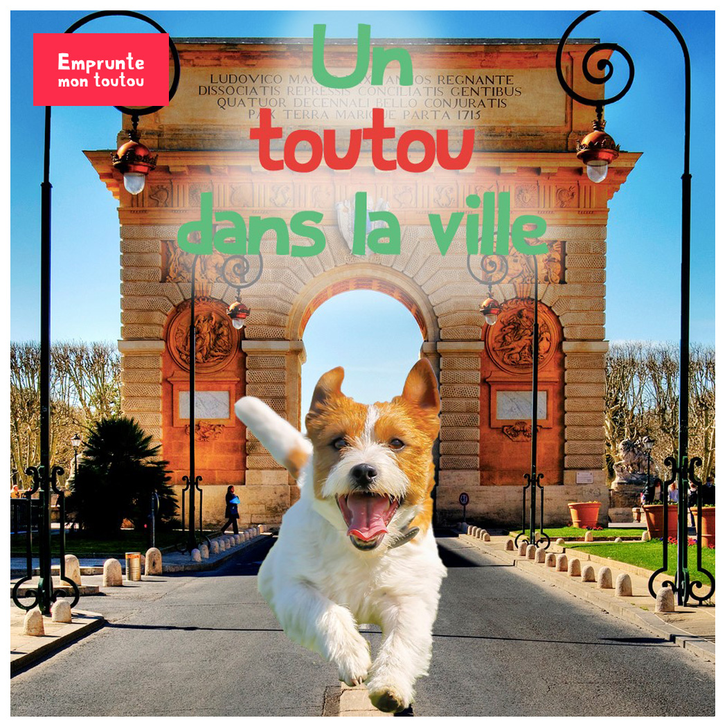 photo de chien devant un arc de triomphe