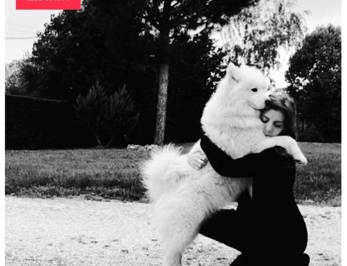 Le chien, le meilleur ami de… la femme