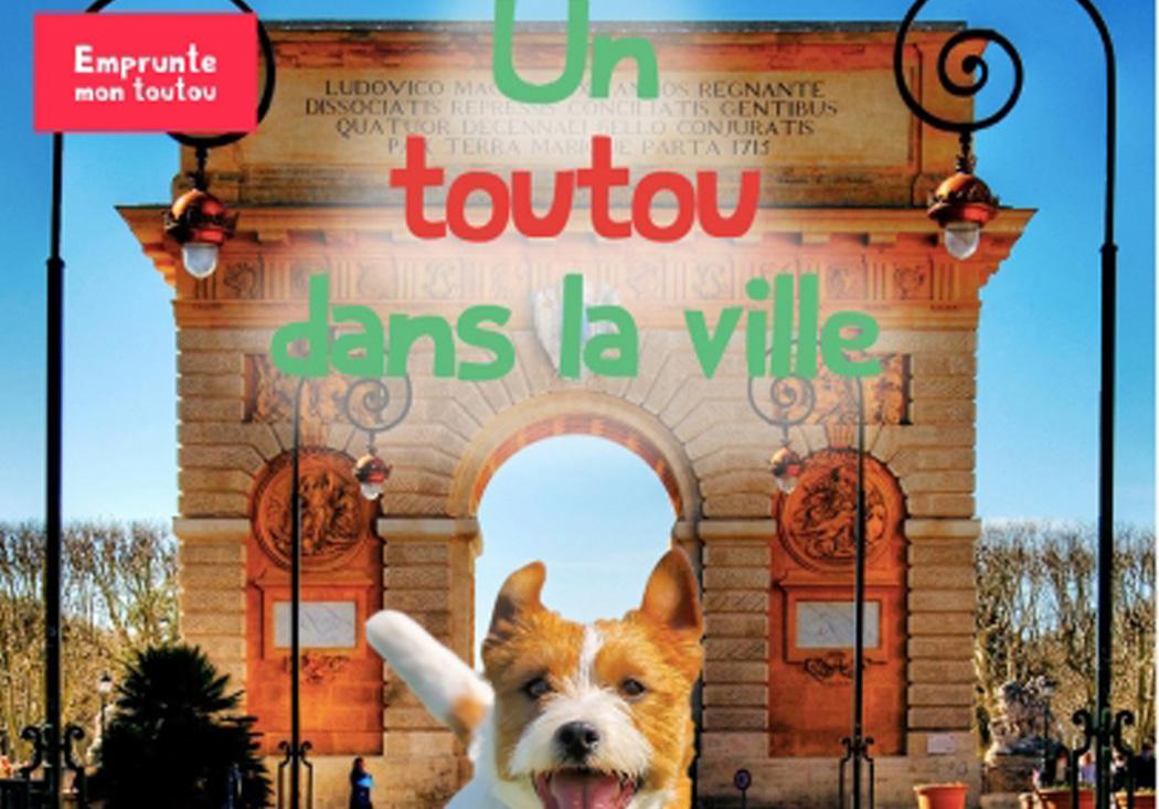Où promener son chien à Versailles