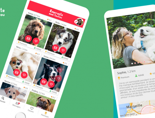 Les applications à avoir quand on a un chien !