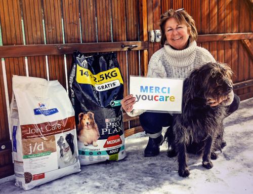 YOUCARE: le moteur de recherche français et solidaire qui a du chien!