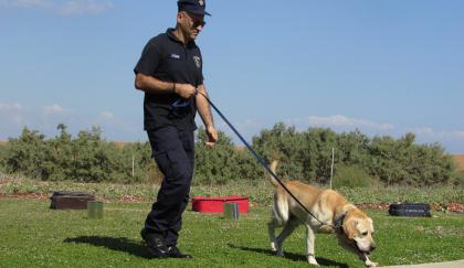 policier tenant un labrador en laisse