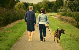 couple promenant un chien