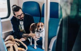 Comment partir en vacances avec votre chien ?