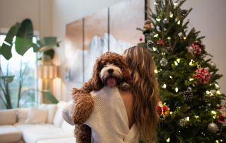 Noël avec un toutou
