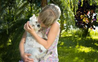 chien gentil avec les enfants