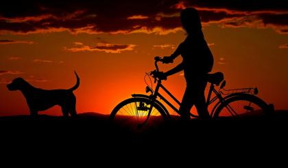 Femme à vélo avec chien