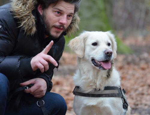 Guide du Maître : éduquer son chien avec le clicker-training