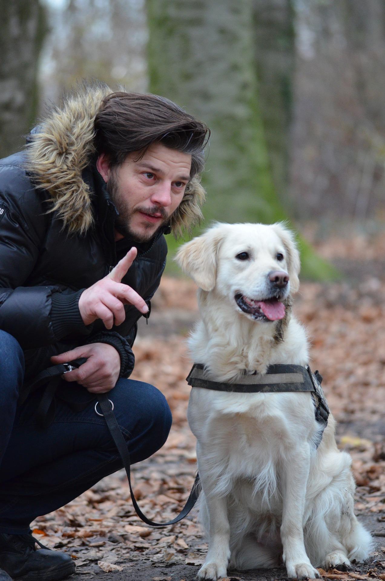 eduquer son chien avec le clicker