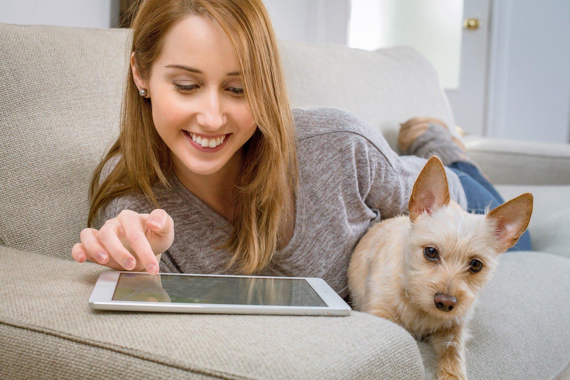 sélection de films sur les chiens