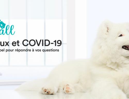 VetCall, la plateforme d'appels gratuite pour les animaux de compagnie