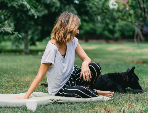 Bien vivre le déconfinement avec son chien : 5 conseils