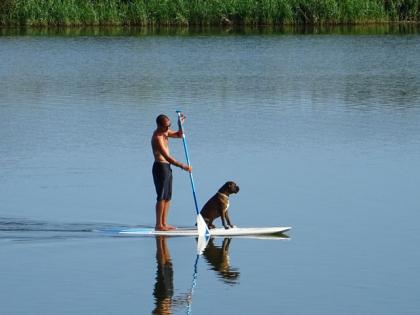 le Cani-paddle