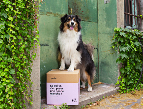 Pepette : l'alimentation pour chien nouvelle génération