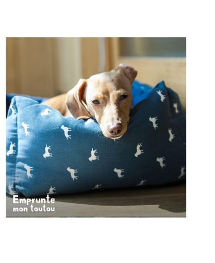 chien dormant dans un panier