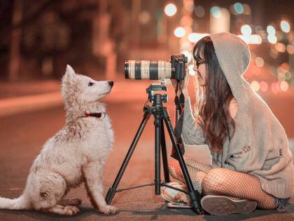 Faire de belles photos de chien
