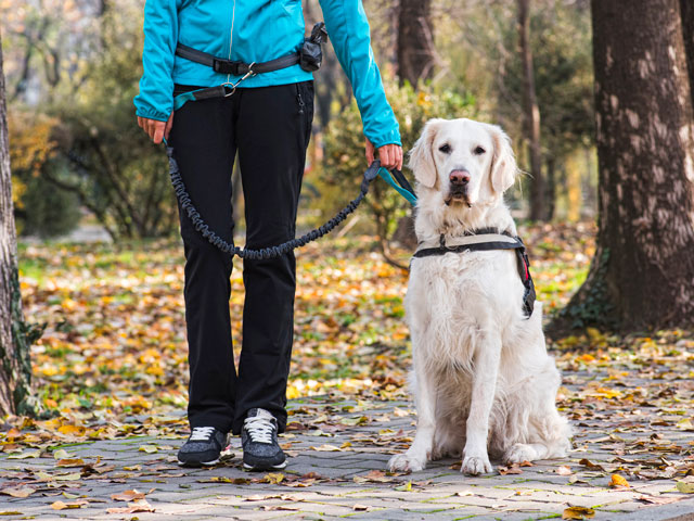 femme en tenue de randonnée tenant un chien en laisse