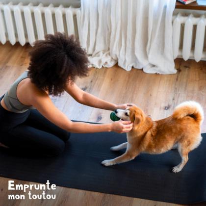 femme faisant du yoga avec un chien de race Shiba Inu