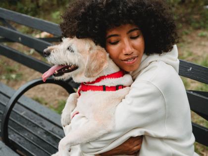 Construire une relation de confiance avec un chien