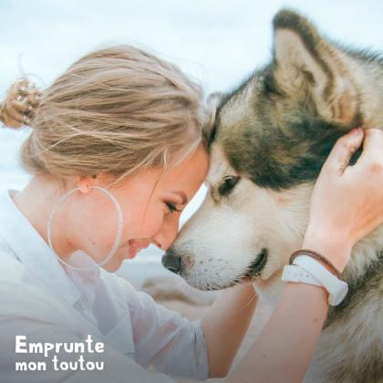 jeune femme et husky front contre front