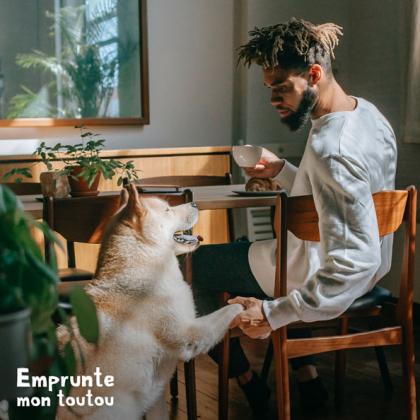 jenue homme tenant la patte de son chien akita inu
