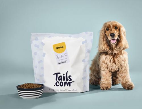 Pourquoi une alimentation sur mesure pour votre chien ?