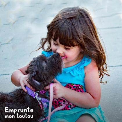 chien léchant le visage d'une petite fille
