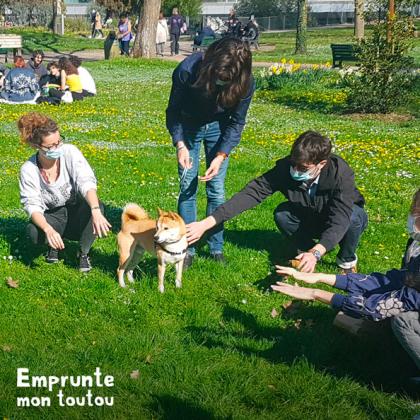 séance d'éducation canine