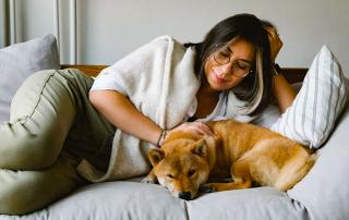 l'epilepsie chez le chien