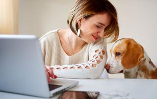 jeune femme commandant sur internet en compagnie de son chien