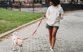 jeune femme promenant un chien en ville